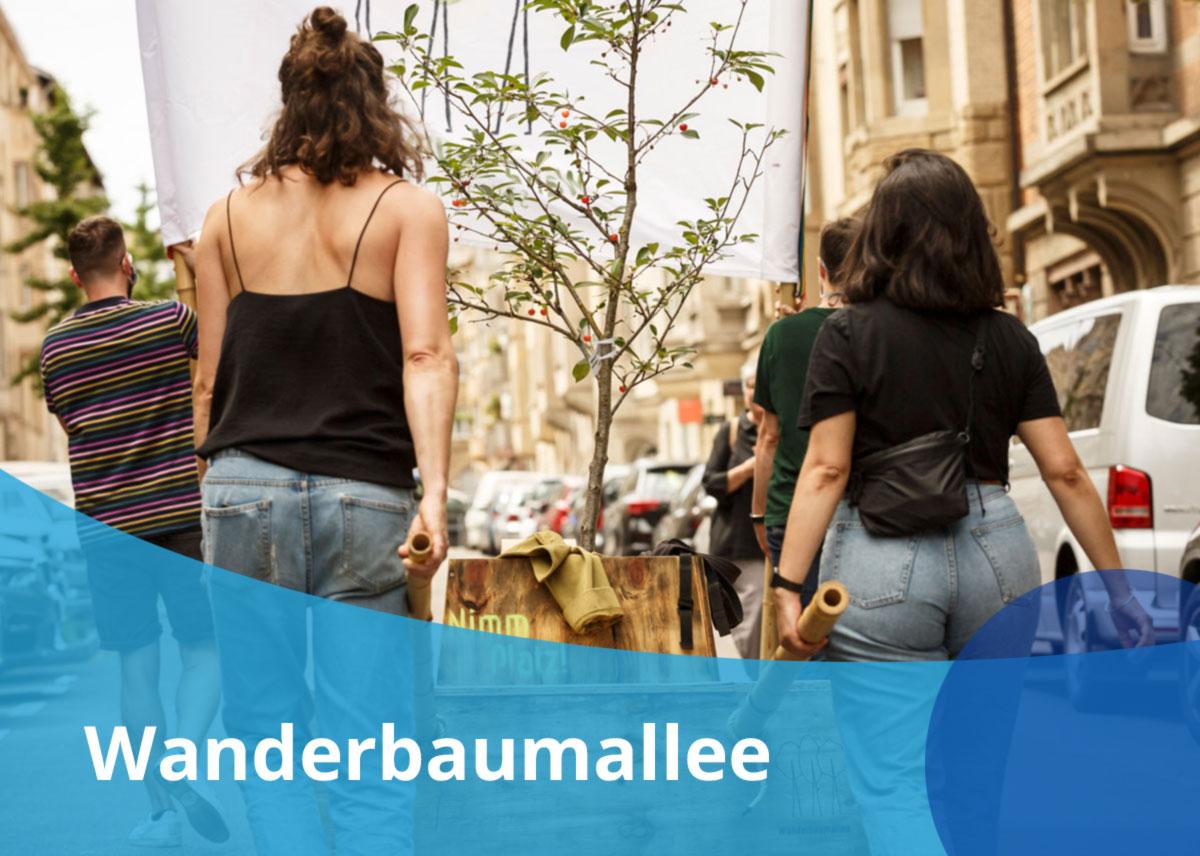 """Titelbild Projekt """"Wanderbaumallee Stuttgart"""""""